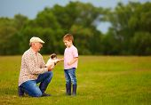 image of grandpa  - grandpa presenting little puppy to excited grandson - JPG