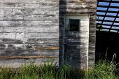 stock photo of tall grass  - A rustic old shed and a door with tall grass around it south of Tensed Idaho - JPG