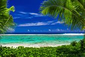 stock photo of deserted island  - Pristine beach on tropical island during sunny day framed by palm trees - JPG