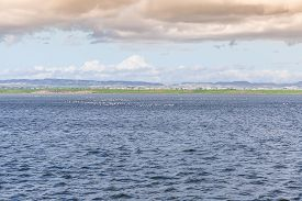 pic of larnaca  - Water Landscape of Larnaca Salt Lake - Cyprus Island ** Note: Soft Focus at 100%, best at smaller sizes - JPG