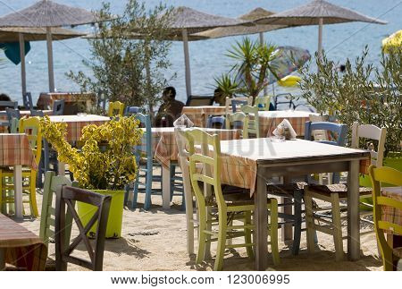 Cute little tavern in the olive shade in Sithonia sleeve Halkidiki Greece