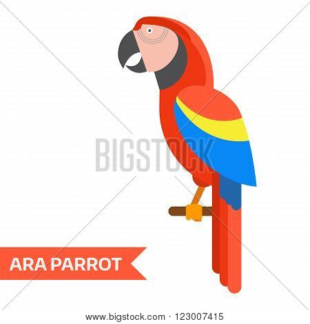 Ara parrot. Red ara vector illustration. Exotic ara bird in flat design. Popular bird species collection. Geometrical ara isolated on white background. Tropical cartoon ara.
