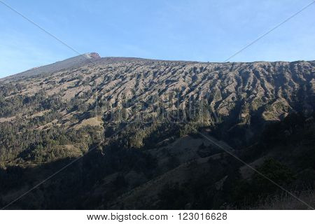 Side of Rinjani volcano peak with erosion and forest on it in Lombok island Indonesia.