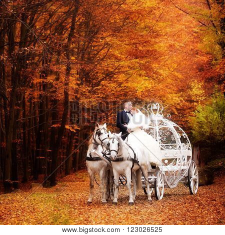 Young wedding romantic couple of bride in white dress and bridegroom in suit in cinderella carriage with horses in autumn deep orange forest outdoor on natural background square picture