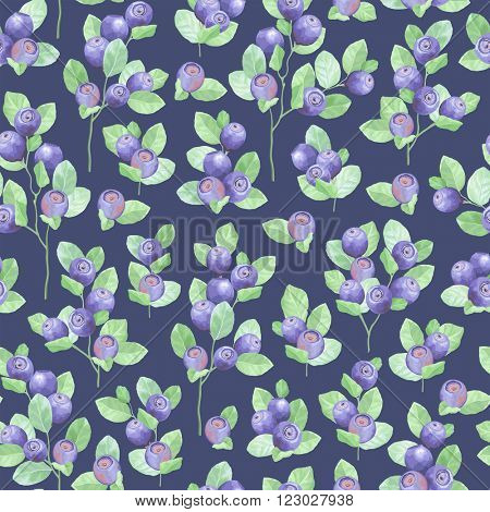 Seamless pattern of blueberry meadow on dark blue background, vector illustration blueberry.