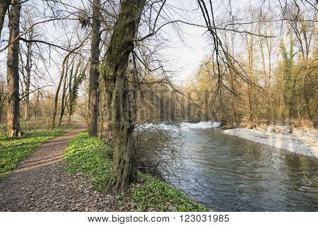 Monza (Brianza Lombardy Italy): the park with path and the Lambro river at winter