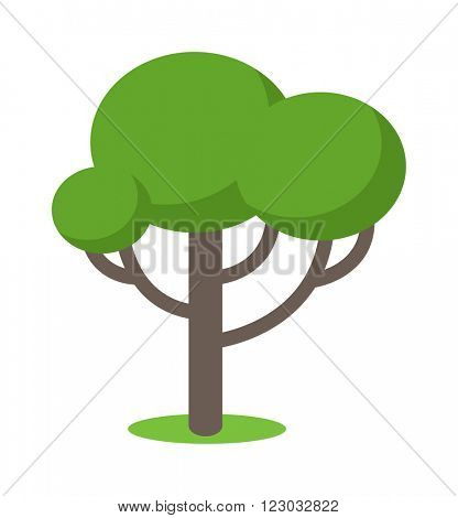 Cartoon tree vector illustration and cartoon tree isolated on white background. Cartoon tree vector icon. Cartoon tree isolated vector. Cartoon tree symbol