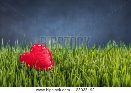 Love concept of felt red heart on green grass