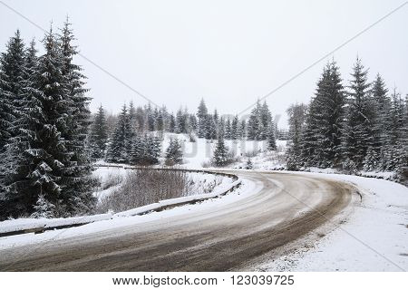 Winter landscape of a road that turns left in the middle of a coniferous forest