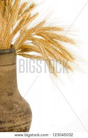 Old crock with a bunch of golden wheat ears isolated on white (as a rural background with copy space for your text)