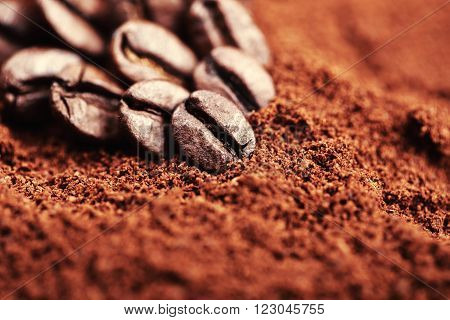 Closeup of group coffee beans lying on ground coffee. Macro of coffee beans. Can be also used as background.