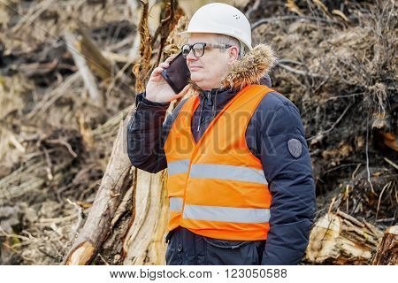 Forest inspector talking on smartphone near to pile sawed bushes and strains