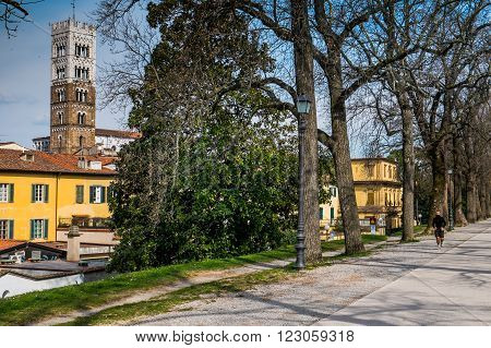 Italy, Tuscany, Province Of Lucca, Lucca