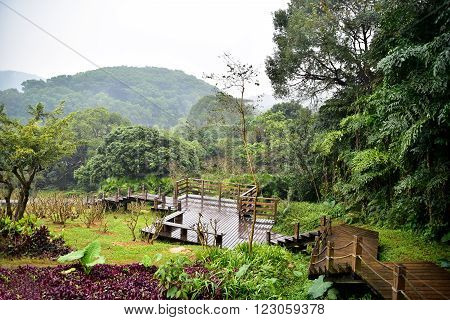 View on wooden walkway in landscaped park