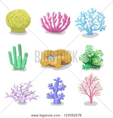 Colorful corals and Reef Set of isolated. Nature marine on a white background. Vector underwater flora, fauna.
