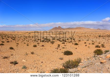 Arid Valley In Morocco