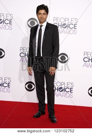 Adrian Grenier at the 41st Annual People's Choice Awards held at the Nokia L.A. Live Theatre in Los Angeles on January 7, 2015.