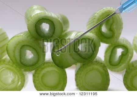 Injection into fresh young onion