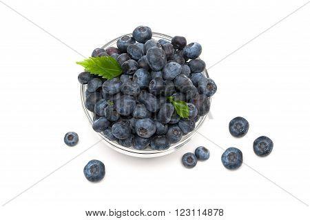 Fresh blueberries closeup on a white background. horizontal photo.