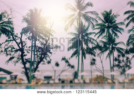Blurred Background with Tilt-Shift Effect. Sunset at a Coastline with Palm Trees. Image Toned with Vintage Colors.