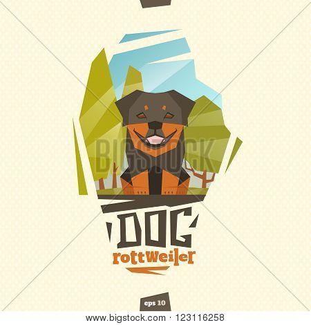 Rottweiler dog on outdoor illlustration. Happy pet