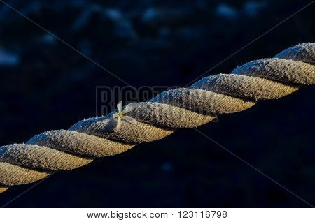 Picture of an Old Vintage Naval Rope