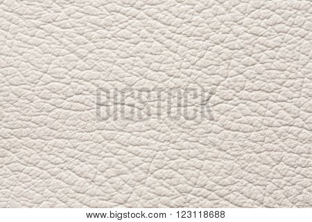 Light gray genuine leather texture background