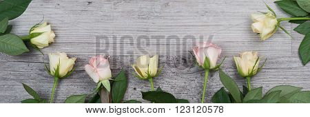 Pink and yellow roses over wooden table, panoramic image