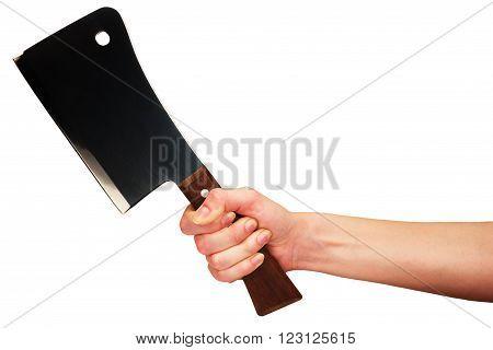 Hand holding kitchen hatchet isolated at white background