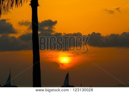 KEY WEST, USA - MAY 10, 2015: Sunset above the Key West Bight on a tangerine sky with some clouds and silhouettes of sailing ships and a palm tree.