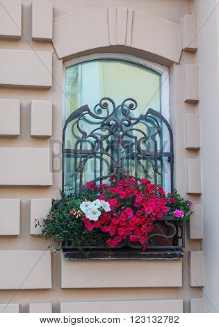 Window in a classic style and a box of flowers. Architecture