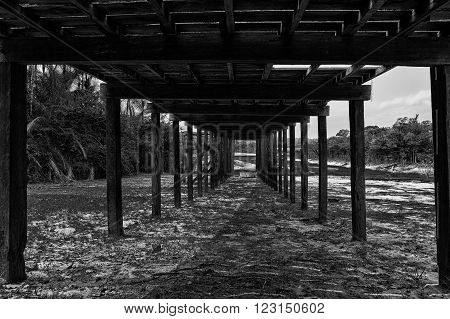 View on ground alley way with grass under wooden construction of bringe or shed with columns outdoor with nobody black and white horizontal picture