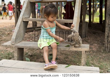 Boca de Valeria village at Amazon river Brazil - December 03 2015: View on one small mullato girl sitting on wooden stairs and playing wild animal of sloth grey color outdoor horizontal picture