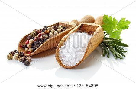 Salt pepper in wooden shovels rosmarinus and coriander isolated on white background