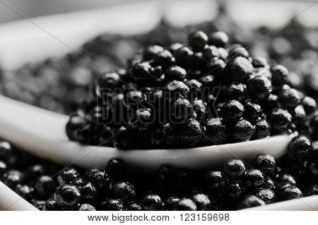 spoon of black caviar close-up in a heap of black caviar horizontal