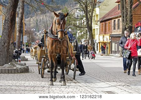 ZAKOPANE, POLAND - MARCH 06, 2016: Harnessed Horse stands at the Krupowki street, the main shopping area and pedestrian promenade in the downtown