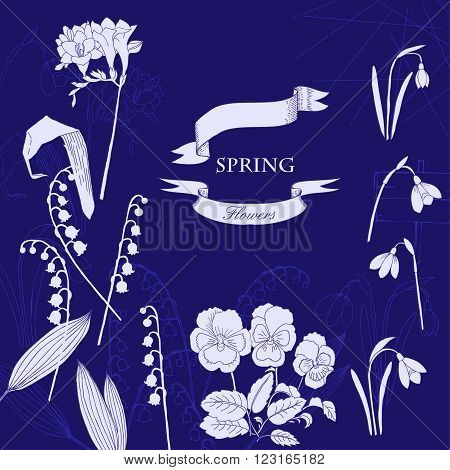 Background with  lily of the valley, galanthus and pansy. Hand drawn snowdrops flowers sketches. Vector Illustration