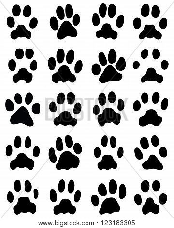 Black print of cats paws on white background, vector