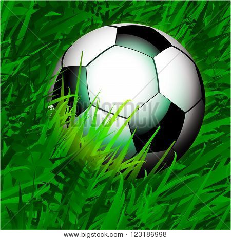 Close Up Football Soccer Over Spring Green Grass