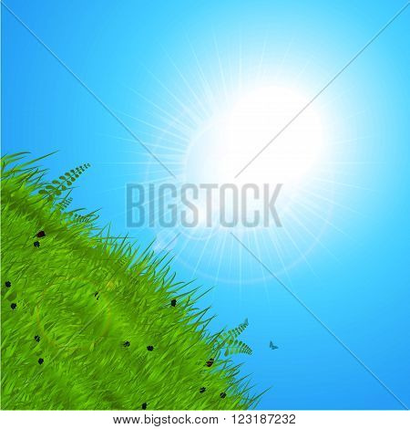 Spring Background with Sunshine Reflecting Over Green Hill and Blue Sky