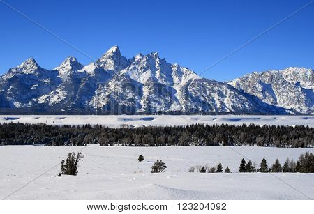 Grand Tetons Mountain Range Peaks on a bright sunlit morning in Grand Teton National Park in Wyoming USA