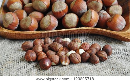 Whole hazelnuts and shelled hazelnuts on the wood plate.