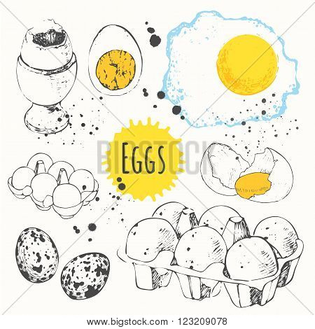 Fresh organic food. Vector illustration with sketch of fresh, boiled and fried eggs. Black and white.