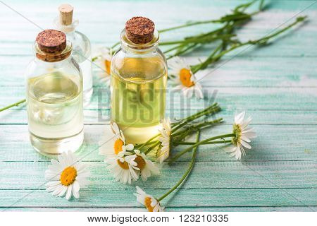 Essential aroma oil with camomile on turquoise painted wooden background. Selective focus. Place for text.
