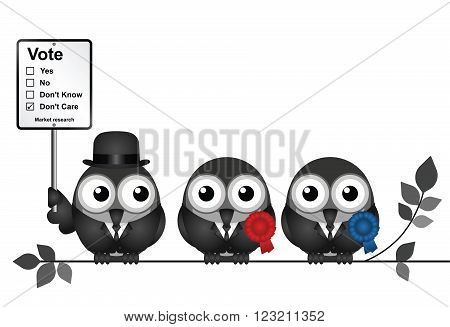 Monochrome comical Market Research voting intention sign with bird politicians perched on a branch isolated on white background