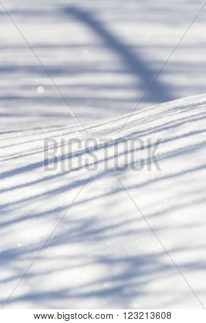 Bizarre shape of shadows on the smooth surface of snow