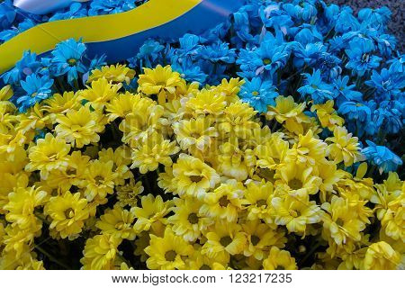 Blue and yellow bouquet in colors of national flag of Ukraine with strip