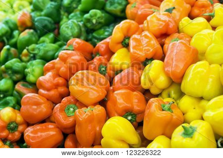 Fresh healthy bio paprika on agricultural market