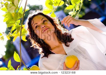 Woman picking lemon