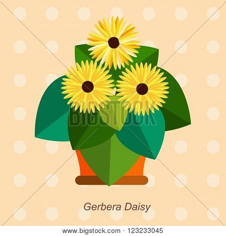 Illustration of houseplant, indoor and office plant in pot. Vector plant  gerbera daisy in pot. Flat  gerbera daisy, vector icon of  gerbera daisy. Office plant in pot.